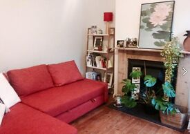 Light double room to rent for 6 months in the Golden Triangle, NR2 from end of November