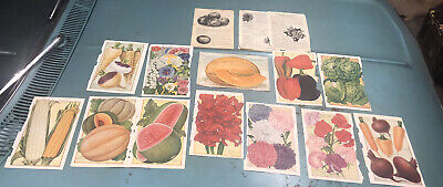 1900 15 18 BURPEE SEED CATALOG PAGES VICTORIAN SCRAP BOOK FLOWER FRUIT COLOR