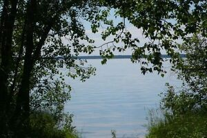 LAKESIDE LOTS FOR SALE AT GOOD SPIRIT LAKE, SASK. Regina Regina Area image 2