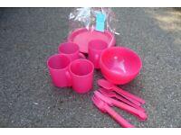 Pink Picnic Set with Carry Bag