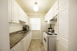 GREAT 3 Bedroom Apartment for rent MINUTES to DOWNTOWN! London Ontario image 4