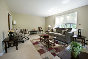 GREAT 3 Bedroom Apartment for rent MINUTES to DOWNTOWN! London Ontario image 2