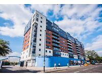 Professionals Wanted! New 2 Bed Apartment To Let