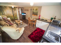 The Forest Cabin holiday let 3 bed twin chalet in West Wales may 5th 7 nights £325
