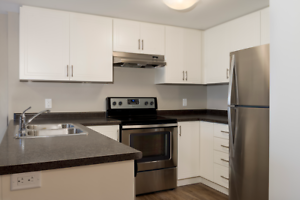 Large 2 Bed Pet-Friendly + In-Suite Washer/Dryer!