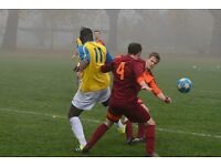Experienced striker required - Men's 11 aside Sunday morning League football (South London)