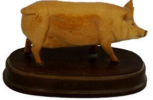 Royal-Doulton-Tamworth-Pig-Model-No-DA215