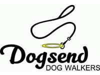 Dogsend Dog Walkers