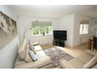 Immaculate 3 Bedroom Property for Rental from November