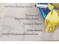 GeeNtee Cleaning Services