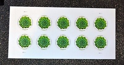 2017Usa Global Forever Rate   Green Succulent   Sheet Of 10  Mint  Postage Sase