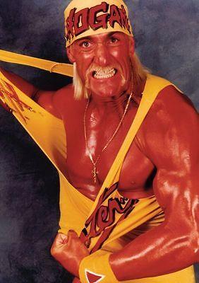 Hulk Hogan Wrestling Legend POSTER