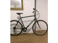 Specialized Crossroad Sports Hybrid Bike XL in very good condition
