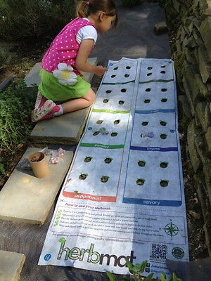 Instant Roll Out  Herb Garden  Template 8 plant varieties  ()