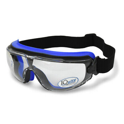 Radians Lpx Clear Iquity Superior Anti Fog Safety Goggles Foam Padded D3d4