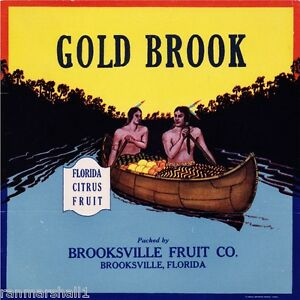 Brooksville-Florida-Gold-Brook-Orange-Citrus-Fruit-Crate-Label-Art-Print