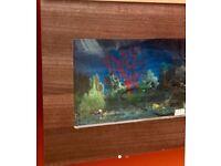Wall Display Aquarium/ Fishtank