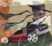The Adventures of Toro Lawn Care (grass cutting service)