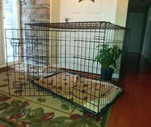 TRAINING KENNEL / Dog Crate