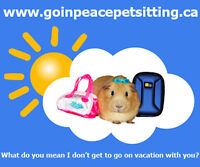 Go In Peace Pet Sitting ~ Caters to 'Small Animals' and Birds