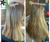 Luxurious Remy Human Tape in Hair Extensions