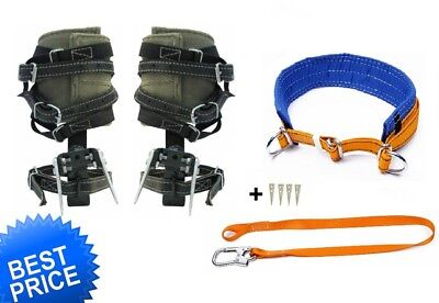 Tree Climbing Spike Set Spurs Gaffs Safety Lanyard Belt Saddle Free Avia Shiping