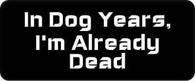 3 - In Dog Years I'm Already Dead Hard Hat Biker Helmet Sticker BS616