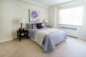 Amazing 2 Bedroom Apartment for Rent MINUTES to Downtown! London Ontario image 10