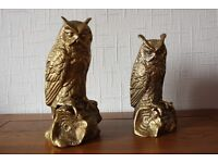Two large Brass Owls.