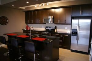 FURNISHED ACCOMMODATIONS - Your home away from home! London Ontario image 7