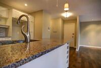 Beautiful 4 1/2 condo Plateau Mont-Roy/ Lafontaine Park+ parking
