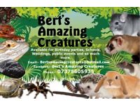 Bert's Amazing Creatures, Mobile Petting Zoo covers 40 miles from Norwich