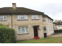 5, 6, 7 or 8 bedroom property to let