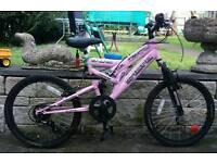 SARBE mountain bike