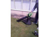 Electric Leaf blower/vaccuum