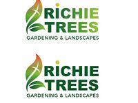Gardening, hedges cut reduced/powerwashing, grass cut