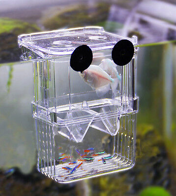 Float Breeding Box Hatchery Nursery High 11cm for Live Fry Babies Pregnant Fish