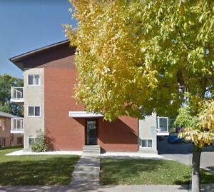 1 Bedroom Suite, Upgraded, central Edmonton, PRICE REDUCED