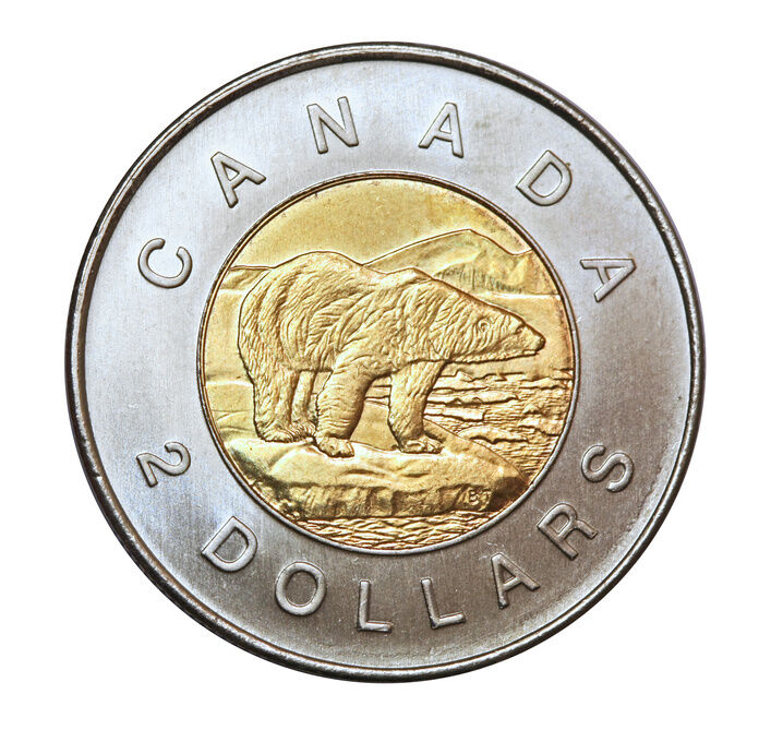 Pictures of canadian money and coins / Wabi coin and walmart