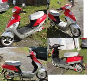 electric scooter 36 volt