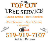 Top Cut tree service STUMP GRINDING CUTTING WOOD