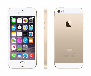 iphone 5s gold with otterbox case locked to bell/virgin