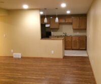 Amazing 2 Bedroom Basement Suite (Airdrie)