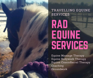 Travelling Equine Massage Therapy
