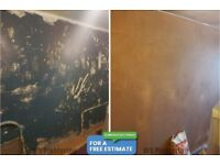 WS Plastering - Glasgow - Quality Work and Competitive Prices - Local Plasterer