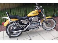 Harley Davidson 1200 xl