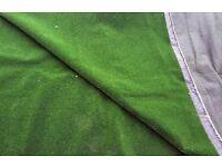 ARTIFICIAL GRASS 12' X 10'
