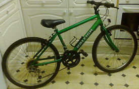 "Raleigh Max Boys Mountain Bike 10spd 24"" Wheels"