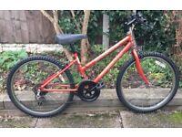 Ladies / Girls Mountain bike Professional Margarita