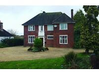Looking for 1- and 2-bed properties for rent in Taunton and Bridgwater area